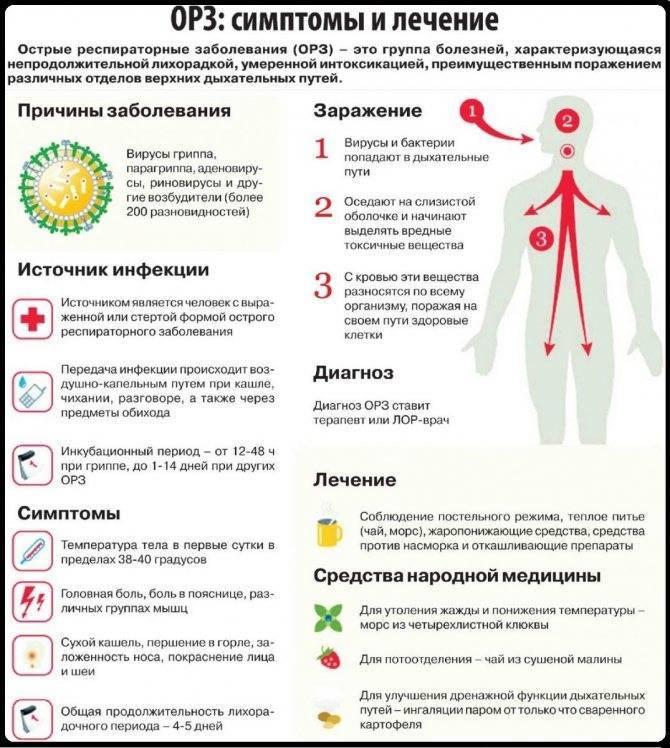 Лечение орви у детей: основные симптомы и правила поведения при выявлении