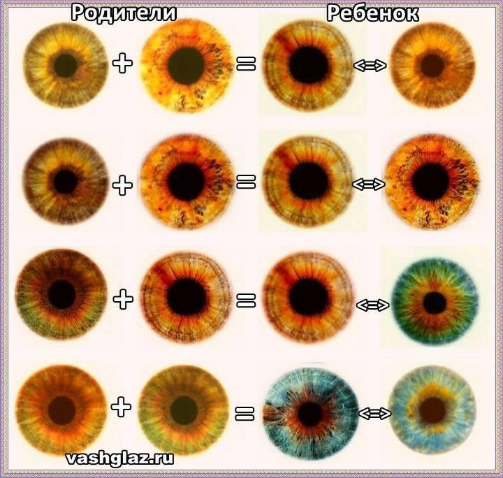 Когда и почему меняется цвет глаз у новорождённых детей
