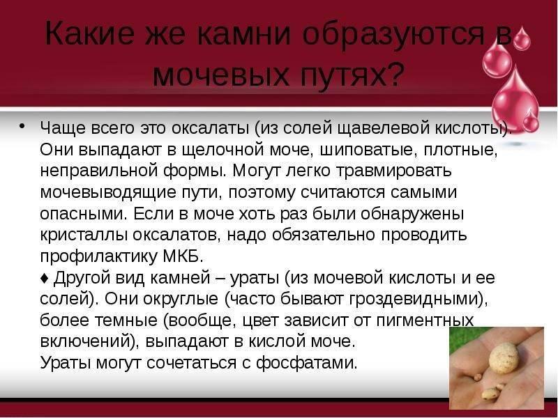 Оксалаты в моче у ребенка – причины, лечение