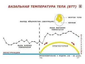 Почему повышается температура перед менструациями: норма или патология?