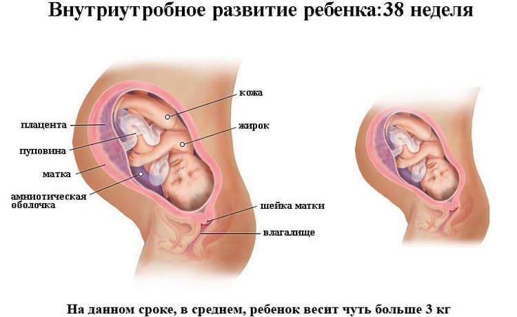 Особенности 39 недели беременности