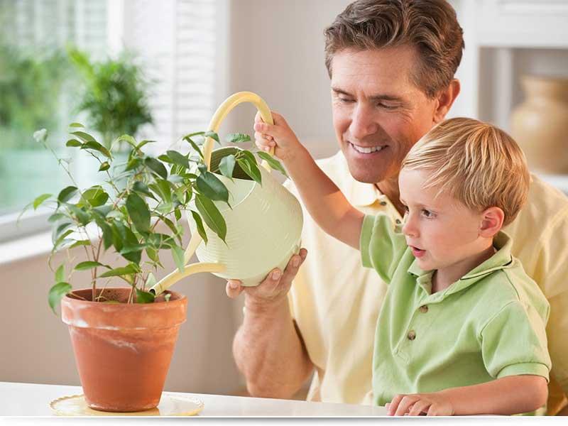 Родительское собрание на тему: « как воспитать ответственность у ребенка?» | контент-платформа pandia.ru