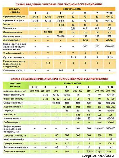 Прикорм по месяцам при грудном вскармливании в таблицах и схемах: когда вводить и с чего начинать
