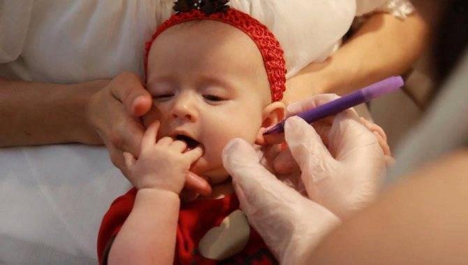 Сколько нужно обрабатывать уши после прокола ребенку