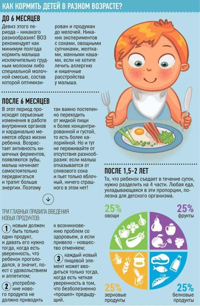 Меню ребёнка в 9 месяцев: подбираем лучшие продукты и готовим вкусные блюда