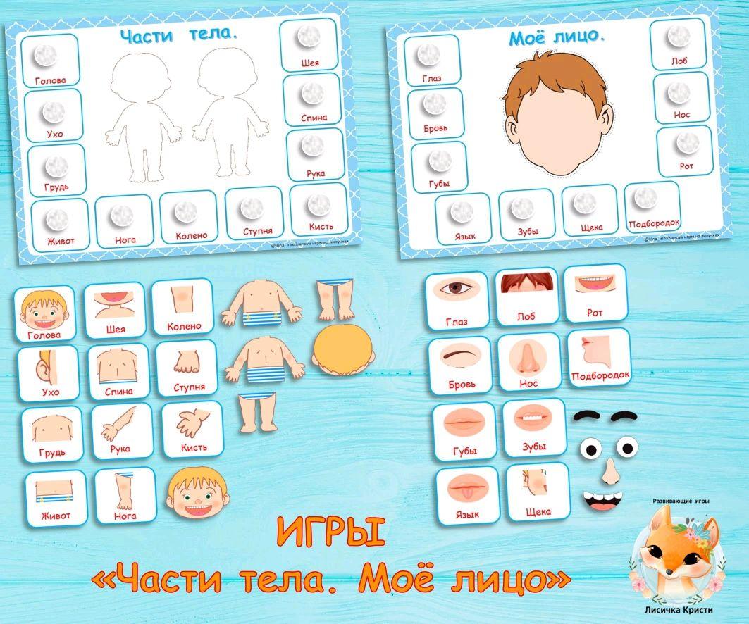 Части тела человека. игры и задания для детского сада | расти умным!