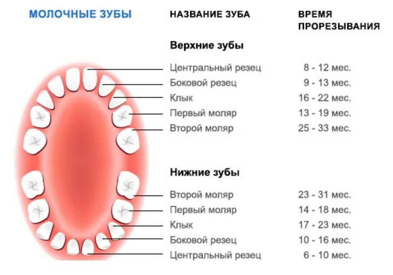 Как облегчить боль при прорезывании зубов у младенцев, помощь для грудничков