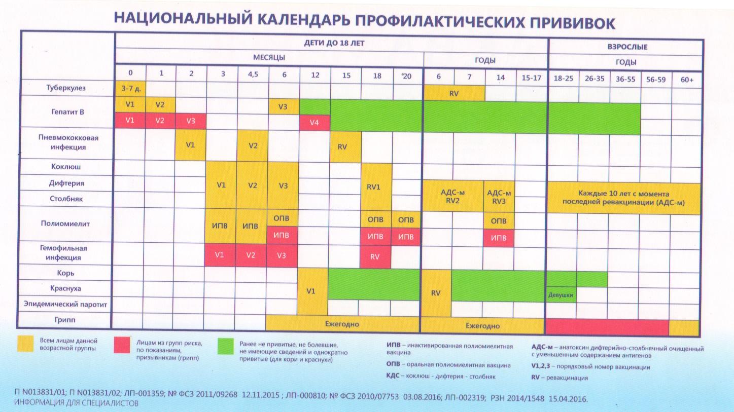 Национальный календарь прививок