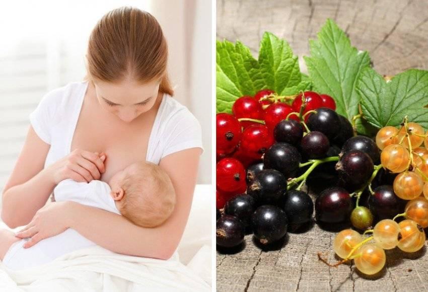 Овощи для кормящей мамы – правильно выбираем и готовим