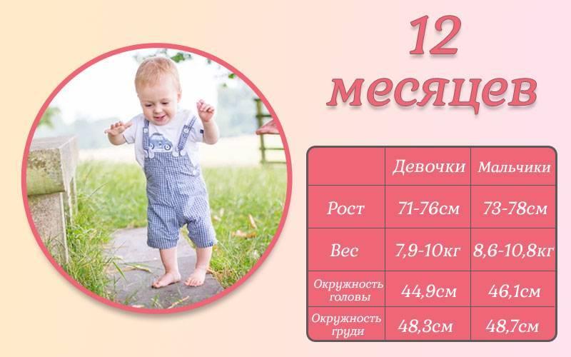 Ребенок 1 год 10 месяцев: развитие, навыки и умения, занятия с малышом