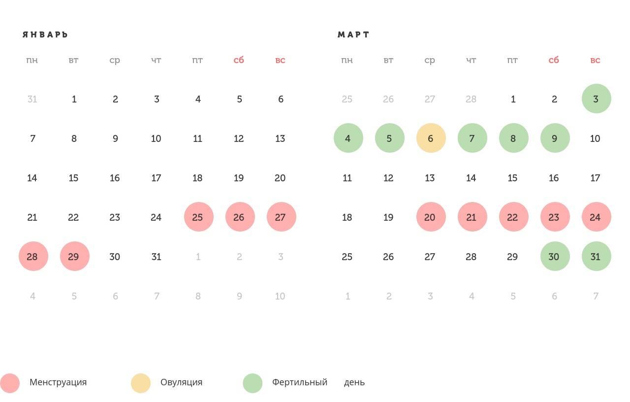 Рассчитать овуляцию: калькулятор онлайн для расчета дня овуляции, как определить дату бесплатно по последним месячным у женщин для зачатия