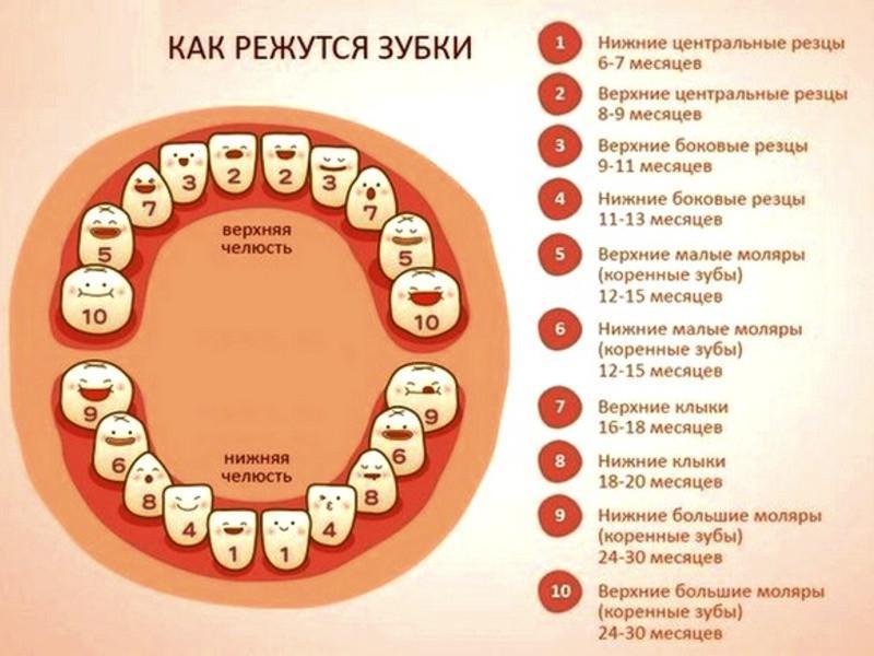 Прорезывание первых зубов у грудничка: признаки, сроки, как помочь, могут ли быть осложнения