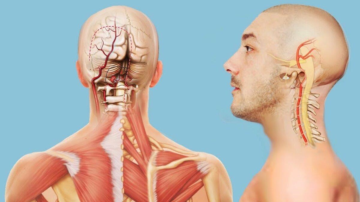 У ребенка болит шея не может поворачивать голову