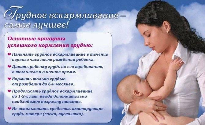 Рекомендации воз по питанию кормящих матерей