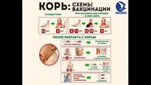 Для формирования стойкого иммунитета: ревакцинация корь, краснуха, паротит в 6 лет, и как она переносится