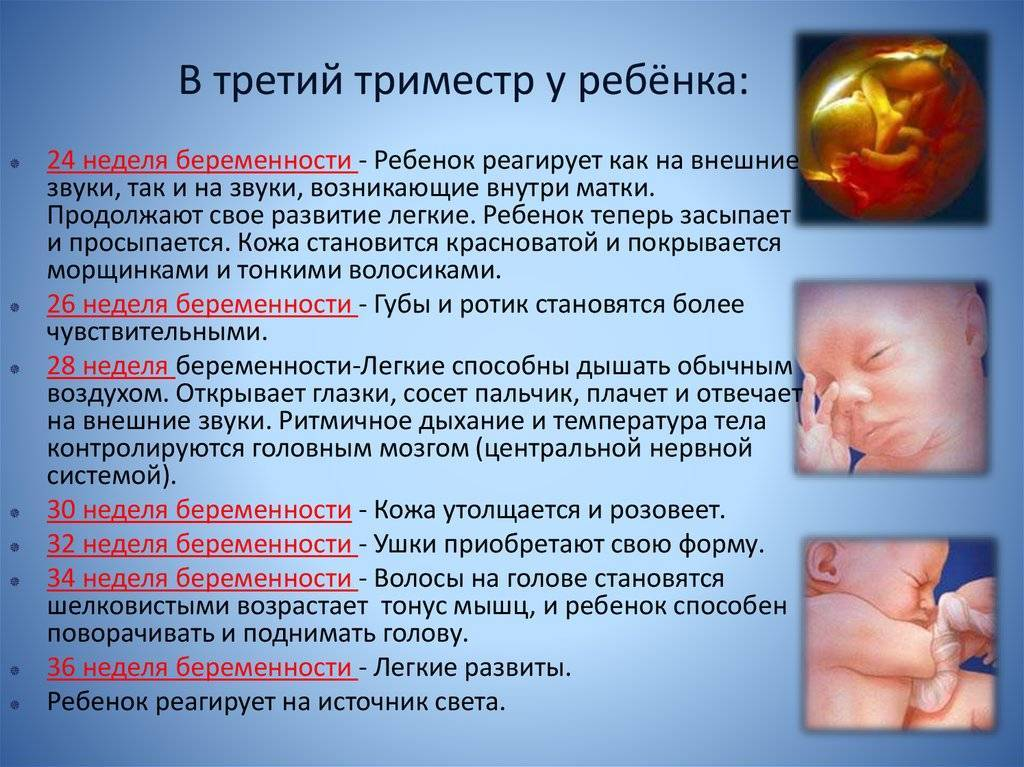 Первый месяц беременности: что нужно знать?