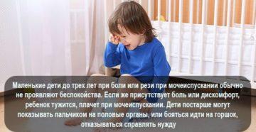 Боль при мочеиспускании у детей | компетентно о здоровье на ilive